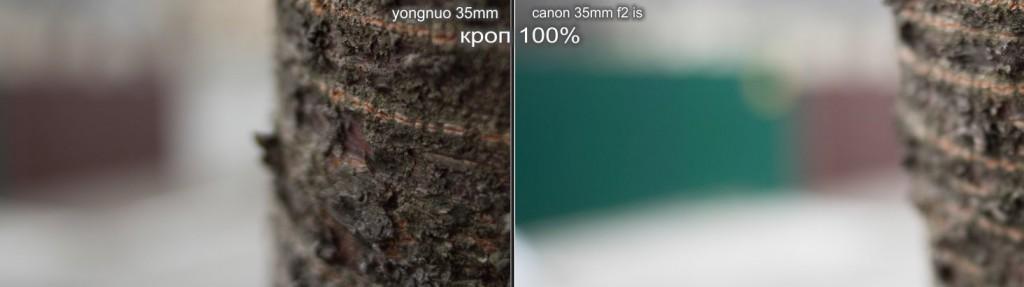 yongnuo 35mm bokeh