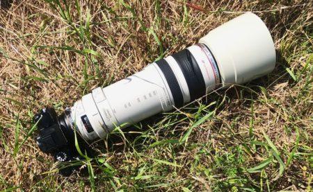 canon 100-400 mm на fujifilm xs10